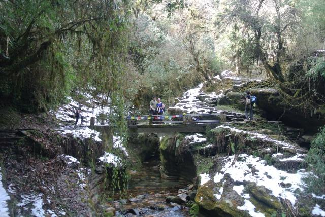 Ghorepani:Walking in a Winter Wonderland