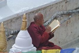 Crouching Buddhist Hidden Monk!