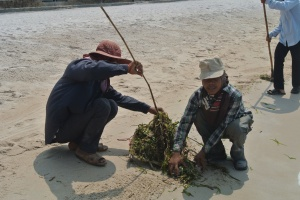 Seaweed Farmers of Kep