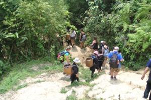 Follow the Ho Chi Minh Trail..