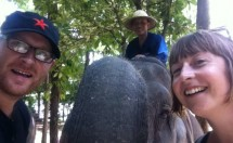 An Elephan-sie in Labang, Thailand