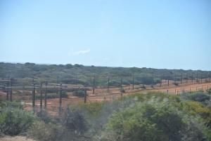Project Eden fencing