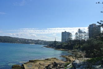 manly22