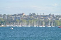 manly30