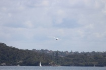Flying high over the Middle Harbour
